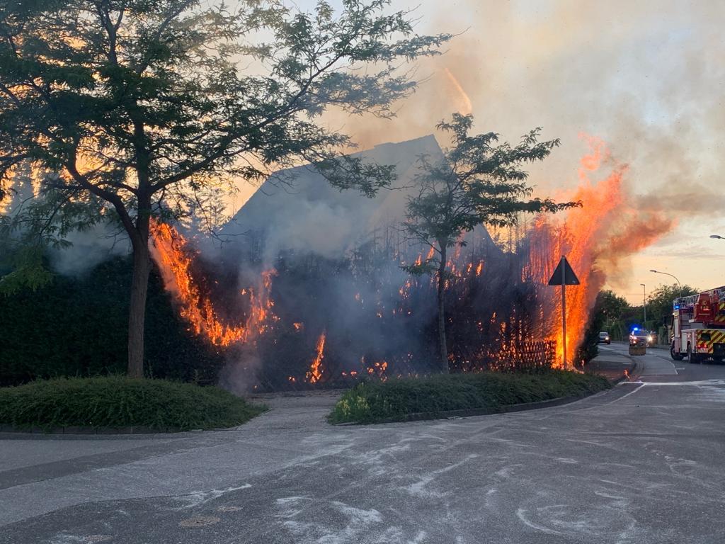 Eine der angezündeten Hecken brannte lichterloh.