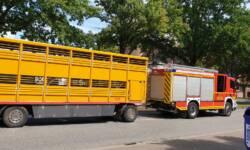 Nach der umfangreichen technischen Hilfeleistung waren beide Fahrzeuge noch fahrbereit, sollen aber trotzdem abgeschleppt werden, um die Schäden zu untersuchen.
