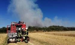Flächenbrand beim Stockacherhölzle