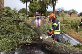 Sturmböen und Starkregen führen zu Einsätzen der Feuerwehr