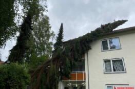 Baum kam auf Wohnhaus zum liegen.