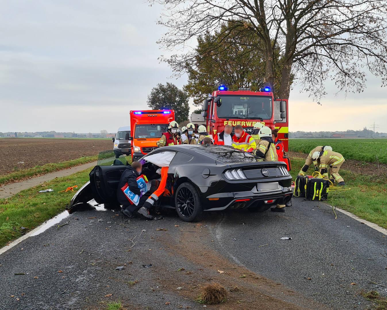 Ford Mustang prallt gegen Baum